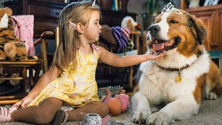 A DOGS JOURNEY Trailer 2019