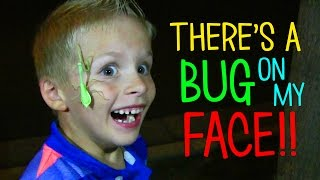 THERE IS A BUG ON MY FACE!!!