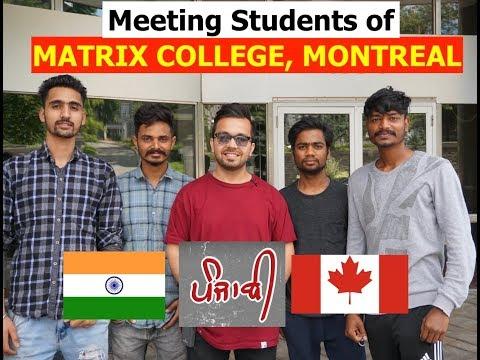 Meeting Punjabi Students of Matrix College, Montreal QnA Work Permit, Jobs, College Review