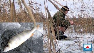 Первый лёд 2019г на линёвом озере Рыбалка на жерлицы и мормышку