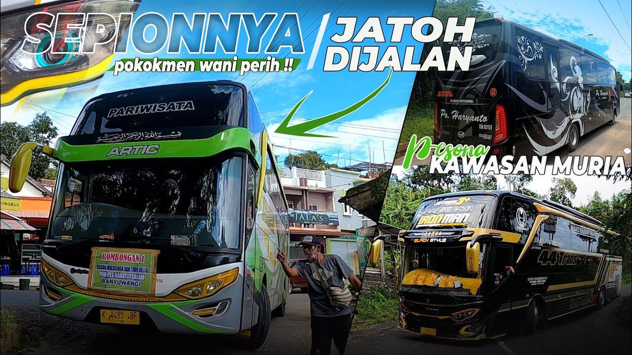 waduh !! Bus Oleng sepionnya jatuh di jalan terpaksa pakai satu sepion saja || Tikungan Muria
