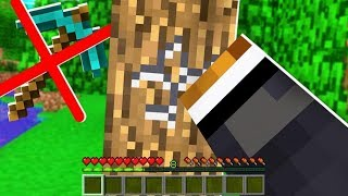 TESTED: Is It Possible To Beat Minecraft WITHOUT Mining?
