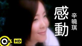 辛曉琪 Winnie Hsin【感動 Touching】Official Music Video