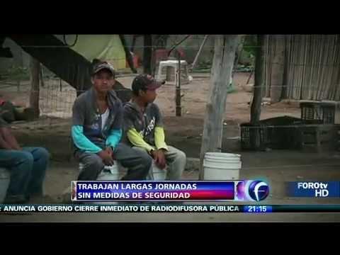 Niños que trabajan en Sinaloa