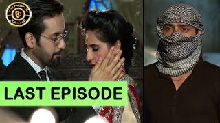 tum milay last episode   16th january 2017   ary digital top pakistani drama