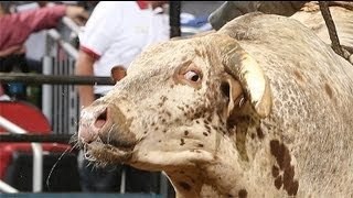 WRECK: Ty Pozzobon knocked out by Carolina Kicker (PBR)