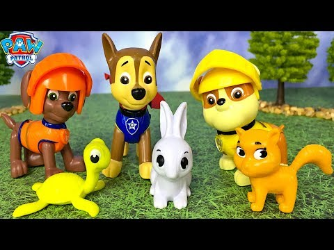 unboxing-paw-patrol-mission-quest-with-chase-rubble-&-zuma