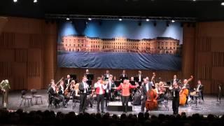 Schönbrunn Orchester
