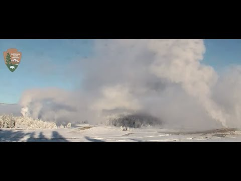 Crazy Morning at Yellowstone Old Faithful 1/21/18 Large eruptions!
