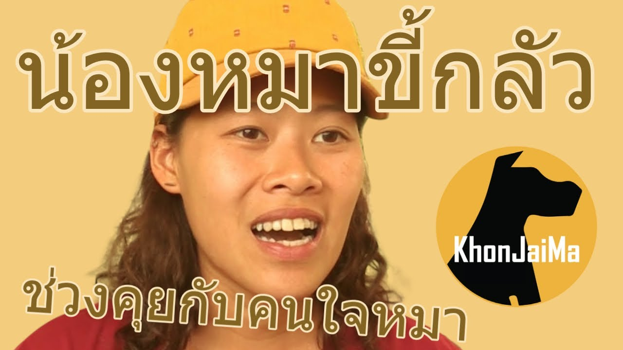 ช่วงคุยกับ Khon Jai Ma | ปัญหาหมาน้องหมาขี้กลัว