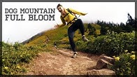 Boredom the Adventure - YouTube