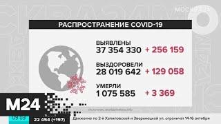 В мире зарегистрировано около 37,5 миллиона случаев заражения COVID-19 - Москва 24