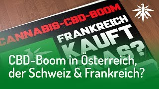 CBD-Gras-Boom | DHV News #139