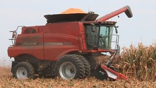 steve sauder farms two case ih 6130 combines on 10 1 2014
