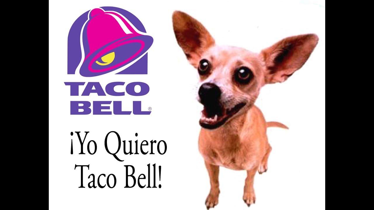 Image result for yo quiero taco bell