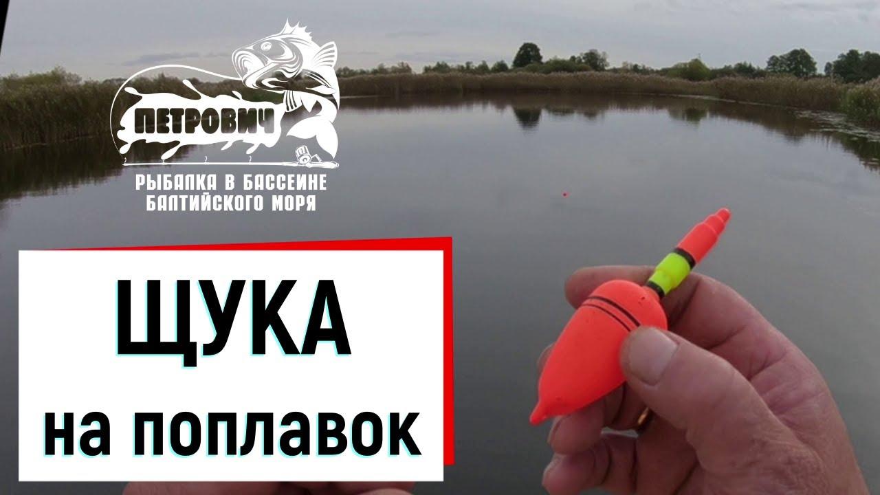 VLOG: Любимая рыбалка на ЩУКУ! На поплавок в проводку. Октябрь 2020.