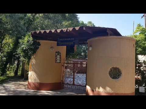 """Пансионат """"Гренада"""", Лазаревское. Аллеи старинного парка. Трели цикад. Фонтан с рыбками. Август 2019"""