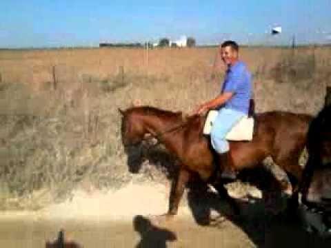 david chema i yo a caballo