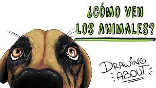 ¿CÓMO VEN LOS ANIMALES? 👀 | Draw My Life