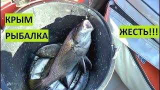 Это ЖЕСТЬ Супер рыбалка Крым Севастополь Море