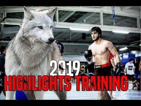 ANZOR AZHIEV - Highlights - Training - 2019