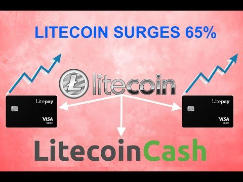 Litecoin Cash And Lite Pay Explained! | Litecoin Surges In Price & How You Might Have Free Money! |