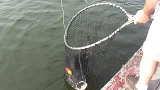 Bungsamran Fishing Park 2019 Рыбалка в Бангкоке Тайланд Часть 3