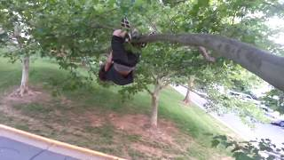 KID FALLS OUT OF TREE!!!
