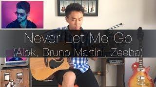 Baixar (Alok) Never Let Me Go - Rodrigo Yukio (Fingerstyle Guitar Cover)(FREE TABS)