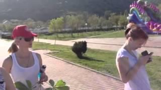 Отдых в Геленджике Архипо-Осиповка Гостиница-кафе
