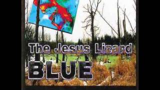 Watch Jesus Lizard I Can Learn video