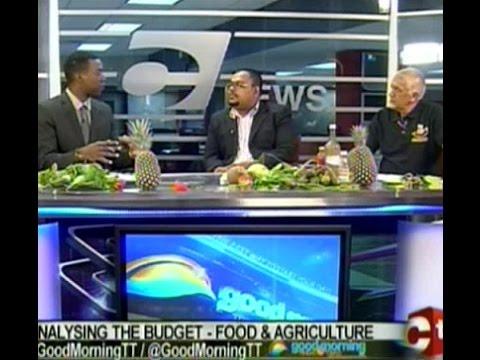 (GMTT) Agri-Economist & Tableland Pineapple Farmers Association President Analyses Budget 2017
