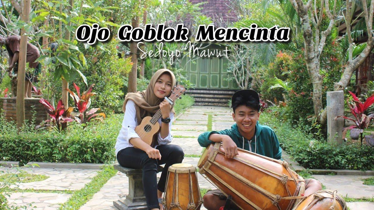 OJO GOBLOK MENCINTA - SEDOYO MAWUT || AFACOVER ft Aditya Maulana (Cover)