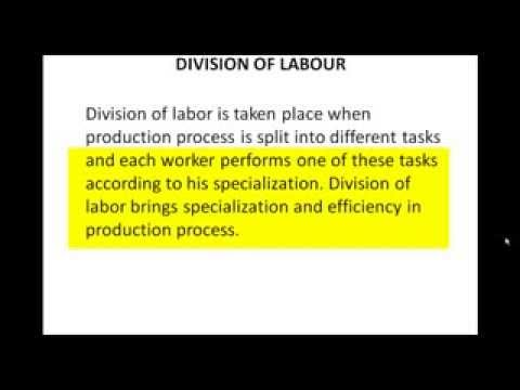 the division of labor Determine both the division of labor,polymorphism, and the concentration of vital forces and their greater energy the growth oforganic substance is, then, the fact which dominates all zoological development it is notsurprising that social development is submitted to the same law.
