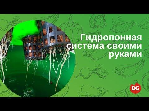 видео: Как сделать гидропонную систему своими руками