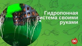 Как сделать гидропонную систему своими руками(Как собрать гидропонную систему своими руками без особого труда, вы узнаете посмотрев видео. Какие инструм..., 2014-05-22T12:36:59.000Z)