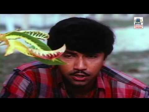 Chinna Chinna Roja Poove HD Song | Poovizhi Vasalile | K J Yeudas Hits Ilaiyaraja Sathyaraj Karthika