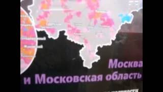 Кошки-сыроеды ))) - МРТ-позвоночника - Поесть в дорогу