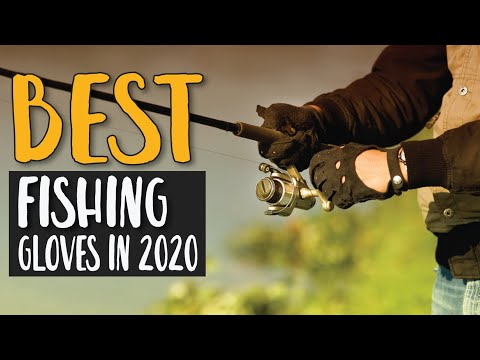 Best Fishing Gloves In 2020 – Our Top & Favorite Products Guide For You!