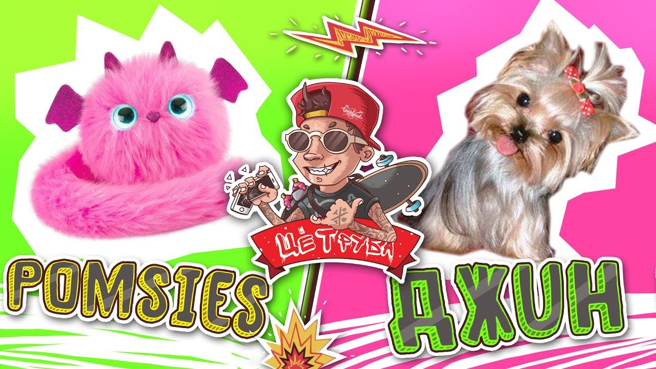 Интерактивная кошечка Pomsies  VS Камызякский пес