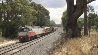 Battle on the 2% grade : Two trains on Warrenheip Bank : Australian trains and railroads