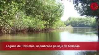 Laguna de Pozuelos, asombroso paisaje de Chiapas