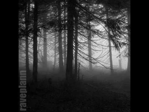 Dark forest Deidriim The Mist Hides Secrets Unknown 8 11 2014