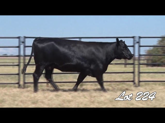 Pollard Farms Lot 224