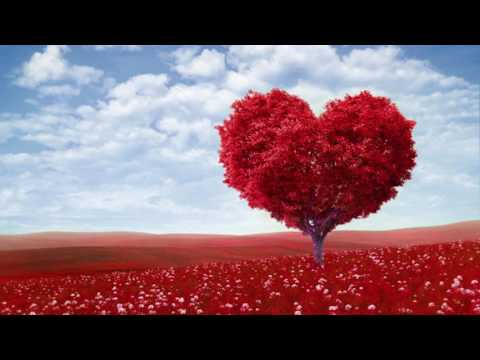 You Give Good Love - Whitney Houston (((HD Sound)))