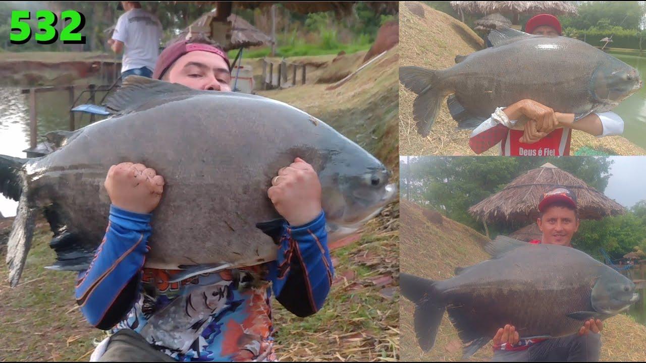 Engenho Velho - Pescaria no Lago 2 com grandes surpresas - Fishingtur na TV 532
