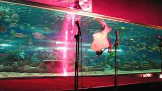 The Mermaid Show at Manila Ocean Park