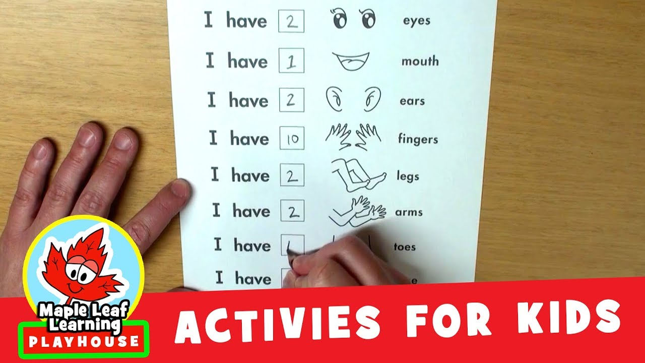 Counting Body Parts Activity for Kids   Maple Leaf Learning