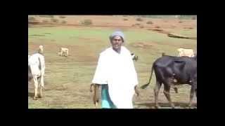 Solomon Demessie - Ager Lasayish አገር ላሳይሽ (Amharic)