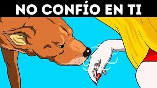 La Ciencia Confirma Que Los Perros Pueden Reconocer A Una Mala Persona